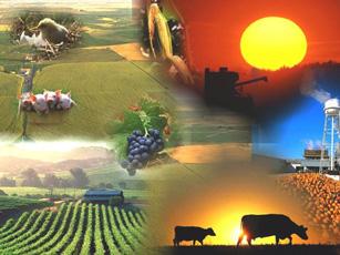 Ref: TOUK20201016002 - Empresa de UK ofrece tecnologías patentadas de digestión anaeróbica, (gestión desechos en granjas/reducción de contaminación) y busca acuerdos de liciencia