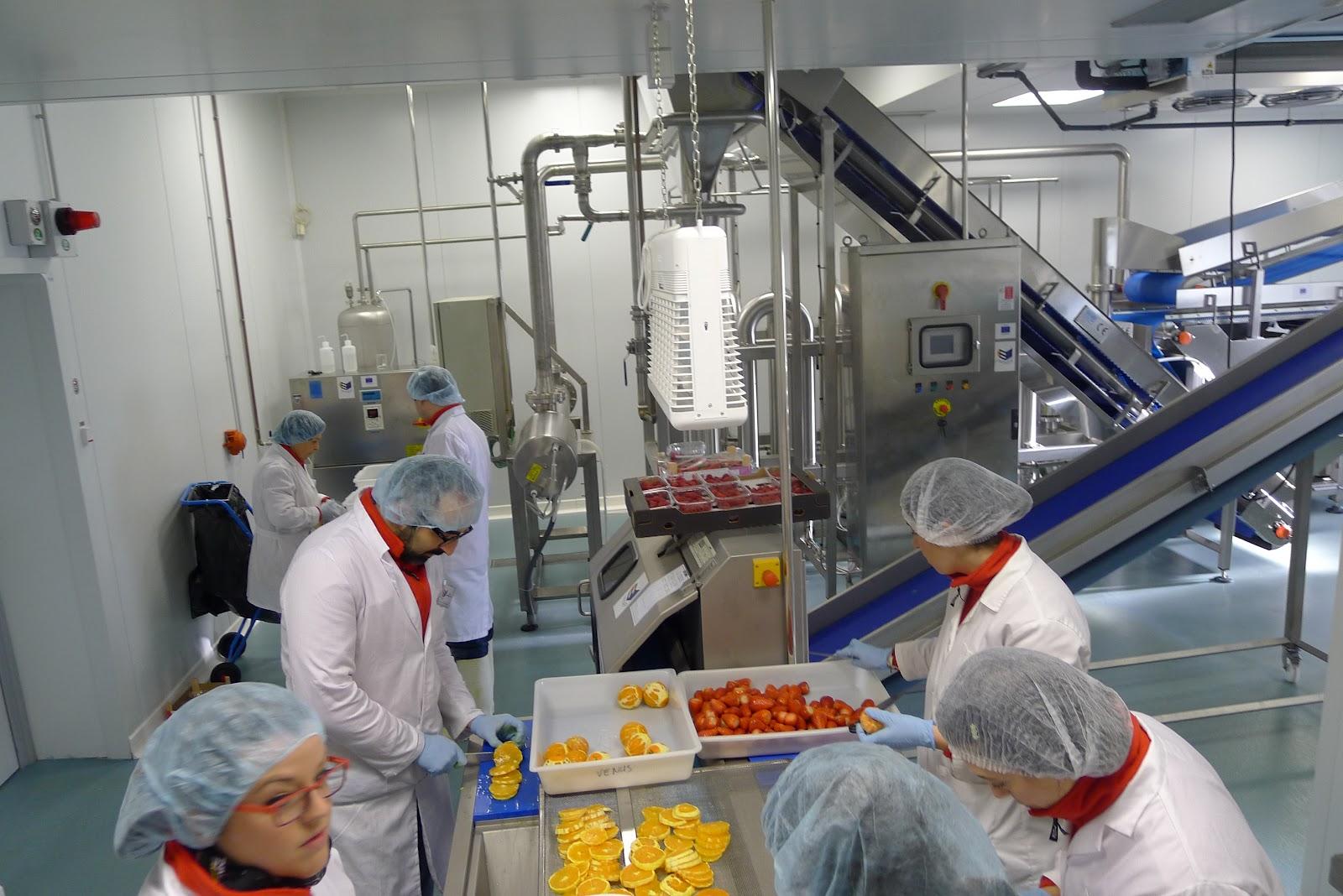 Desarrollo de sistemas automáticos en la industria alimentaria