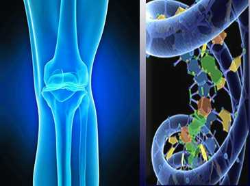 Ref: TODE20180712001 - Revestimiento antimicrobiano de superficies para prótesis