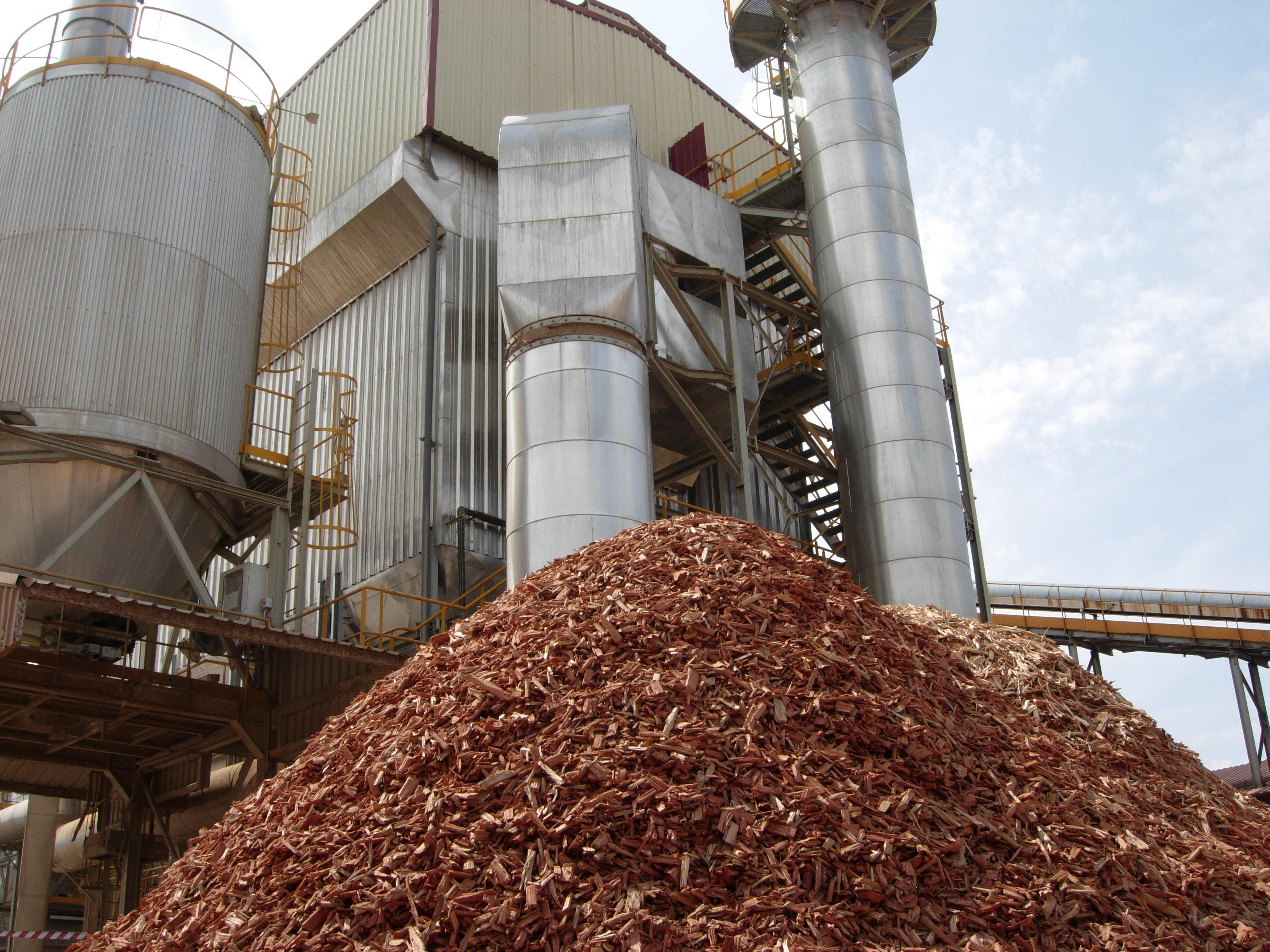 biomasa_puente_genil_0