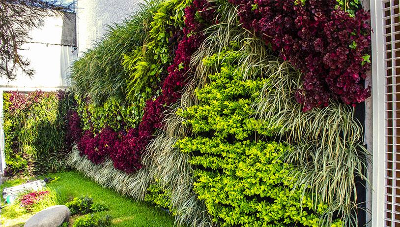 Ref: TOES20150615001 - Nuevo sistema para cultivar plantas en planos verticales o inclinados
