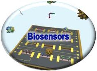 Ref. TOUK20151216002 - Biosensor fotónico funcionalizado altamente sensible y de bajo coste para aplicaciones de diagnóstico médico