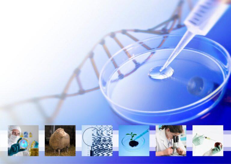 Instrumento PYME – 05-2016-17 - Innovación en el sector de la biotecnología sanitaria