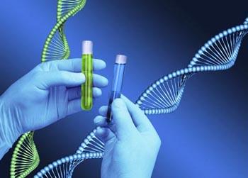Chemist hands holding test tubes, DNA helix model background