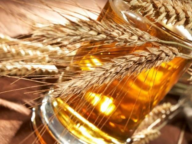 Ref TOUK20160415001 Cultivo de cebada a medida con características clásicas para empresas productoras de malta que abastecen a la industria de elaboración de cerveza artesanal y destilerías