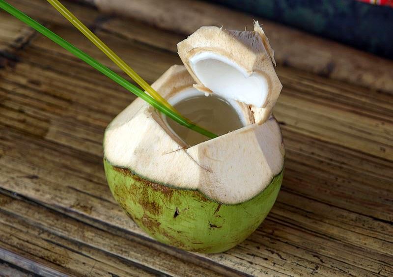 Ref. BOBR20151026001 Productor de bebidas de agua de coco busca socios comerciales para vender sus productos en Europa y Norteamérica