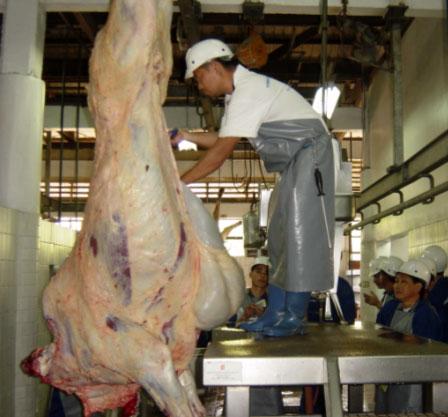 Ref: TRMD20150206001 - Monitorización microbiológica de reses bovinas y porcinas durante el período de venta