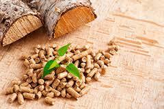 Ref. BRPL20170529001 Empresa polaca se ofrece como distribuidor a fabricantes de pellets de madera en la UE y Bielorrusia