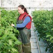 Ref: TRFR20190227001 - Productor francés de condimentos 100% naturales busca experiencia científica en fermentación de soja