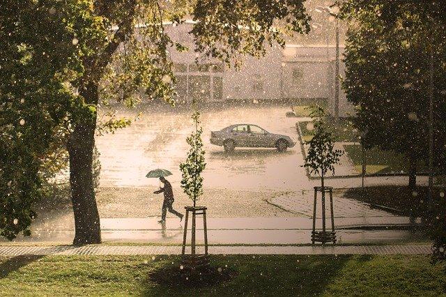 Ref: TODE20210218001 - PYME alemana ofrece portal de precipitaciones que permite medidas proactivas en ciudades inteligentes