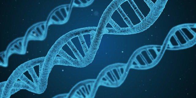 Ref. TRIT20210513001 Centro clínico italiano busca colaboración técnica y/o investigadora para la detección de marcadores genéticos y biológicos de enfermedades neurológicas