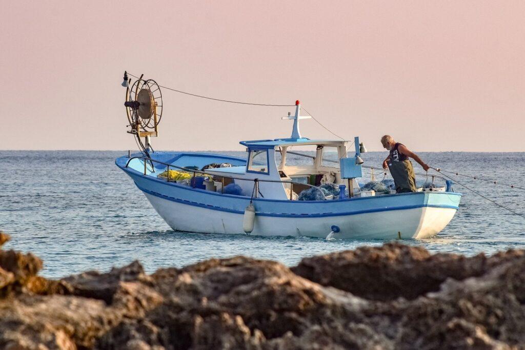 Ref. BODK20210623001Empresa danesa ofrece pescado fresco y congelado y busca distribuidores europeos