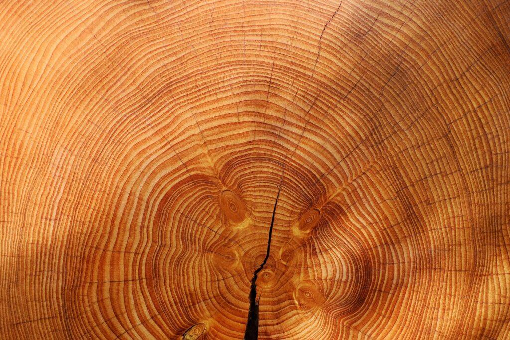 Ref. BOBY20210614001 Fabricante bielorruso de accesorios y mobiliario de madera natural busca socios para acceder a nuevos mercados en el marco de un acuerdo de distribución o de subcontratación
