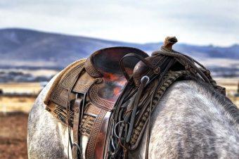 Ref. BRFR20210722001 PYME francesa está buscando fabricantes europeos para desarrollar una tela para silla de montar a caballo.